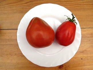 Томат Красная груша