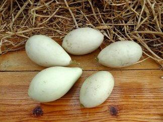 Тыква Фальшивое яйцо из Озарков