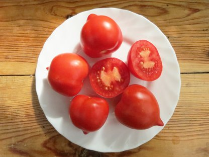 Томат Сеньор помидор