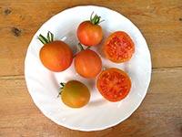 Томат Оранжевый перс Orange Peach
